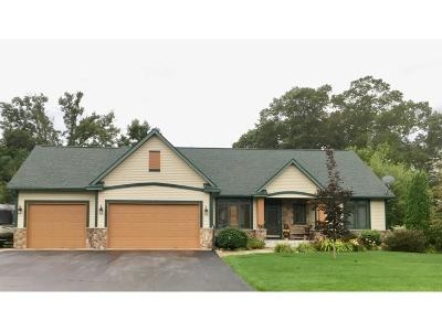 North Branch Single Family Home For Sale: 5083 381st Lane