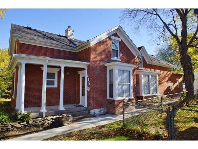Hastings Single Family Home For Sale: 406 7th Street E