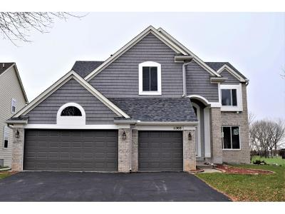 Blaine Single Family Home For Sale: 11203 Nassau Circle NE
