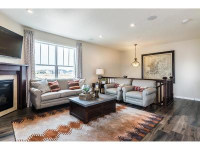 Maple Grove Condo/Townhouse For Sale: 8169 Central Park Way N