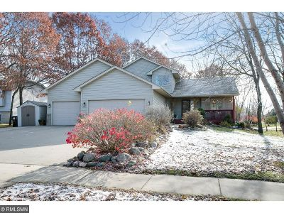 Saint Francis Single Family Home For Sale: 2880 233rd Lane NW
