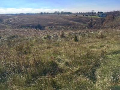 Prescott Residential Lots & Land For Sale: Xxx 1055th Street