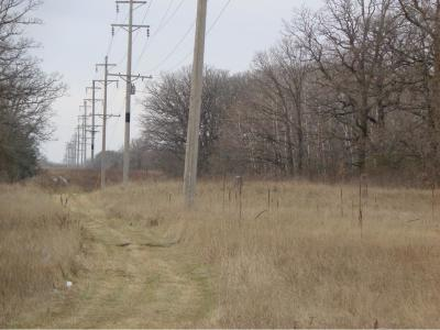 Sherburne County Residential Lots & Land For Sale: 19524 County Road 15