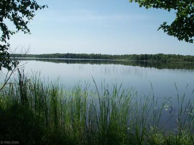 Nashwauk Twp MN Residential Lots & Land For Sale: $289,000