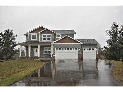 North Branch Single Family Home For Sale: 39122 Everett Avenue