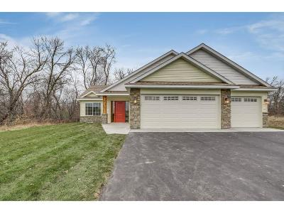 North Branch Single Family Home For Sale: 38292 Emerald Boulevard