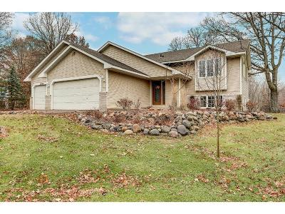 Isanti Single Family Home For Sale: 28386 Century Court NW