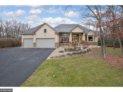 Ham Lake Single Family Home For Sale: 2904 134th Avenue NE