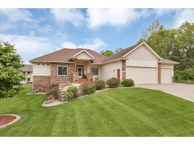 Saint Cloud Single Family Home For Sale: 2034 Temminck Road