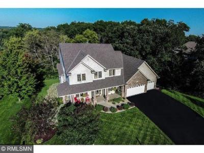 Lakeville Single Family Home For Sale: 16751 Isosceles Avenue