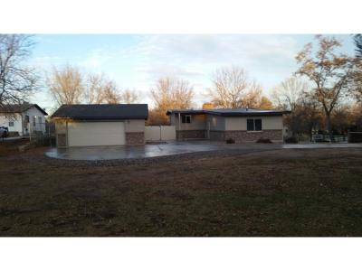 Hennepin County Single Family Home For Sale: 1215 W River Road