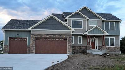 Single Family Home For Sale: 214 Cedar Lake Court