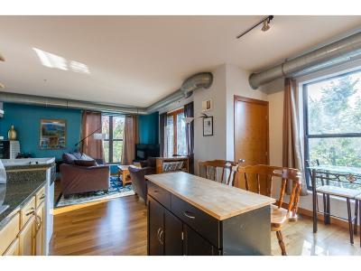 Minneapolis MN Condo/Townhouse For Sale: $205,000
