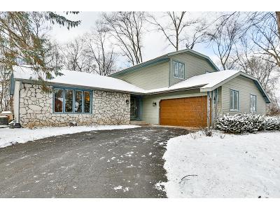 Eden Prairie Single Family Home For Sale: 6958 Raven Court