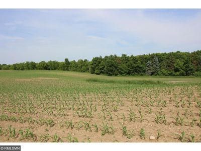 Maple Lake Residential Lots & Land For Sale: Xxx County Road 8 NW