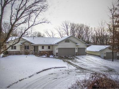 Princeton MN Single Family Home For Sale: $334,900