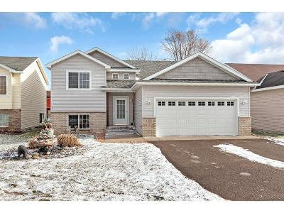 Sartell Single Family Home For Sale: 1208 Knickerbocker Court