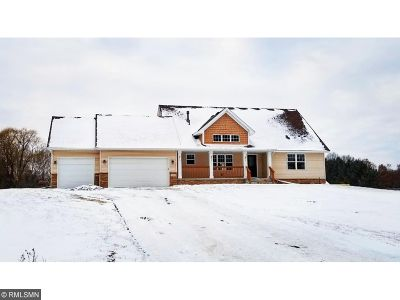 Saint Francis MN Single Family Home For Sale: $368,500