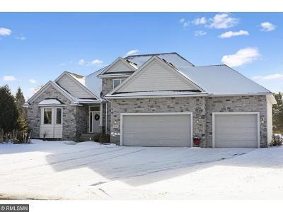 Ham Lake Single Family Home For Sale: 1826 141st Lane NE