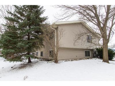 Eagan Single Family Home For Sale: 4454 Cinnamon Ridge Trail