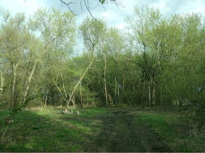 Hutchinson Residential Lots & Land For Sale: Tagus Ave