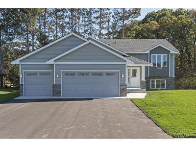 Cambridge Single Family Home For Sale: 1028 18th Avenue SE