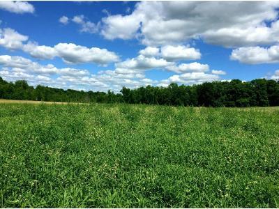 Residential Lots & Land For Sale: 6445 Ambassador Street NW