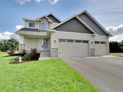Ham Lake Single Family Home For Sale: 3719 172nd Lane NE