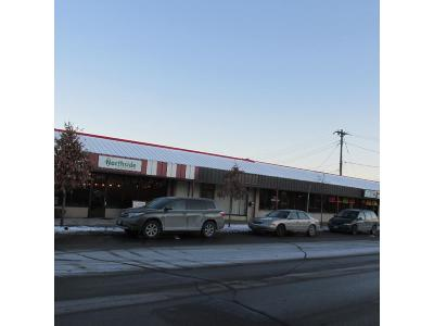 Crystal, Golden Valley, Minneapolis, Minnetonka, New Hope, Plymouth, Robbinsdale, Saint Louis Park Commercial For Sale: 4328 N Lyndale Avenue N