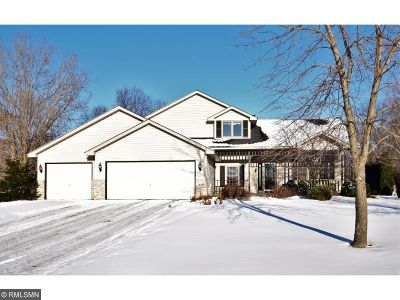 Ham Lake Single Family Home For Sale: 16241 Urbank Street NE
