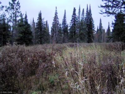 McGregor Residential Lots & Land For Sale: 18940 State Highway 27