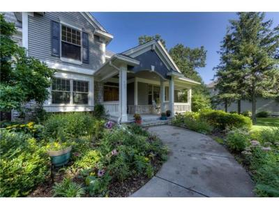 Vadnais Heights Single Family Home For Sale: 423 Vadnais Lake Drive