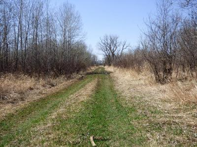 Sherburne County Residential Lots & Land For Sale: Tbd 45th Avenue SE