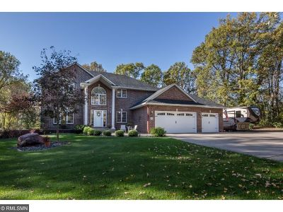 Forest Lake Single Family Home For Sale: 6343 184th Street N