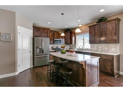 Lakeville Single Family Home For Sale: 20001 Heath Avenue