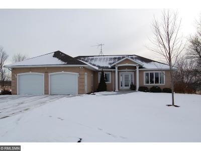 Cokato Single Family Home For Sale: 13905 53rd Street SW