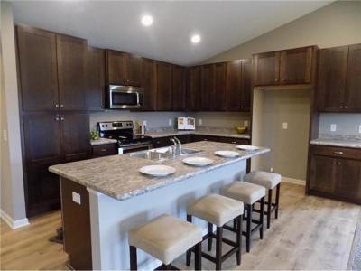 Chisago County, Washington County Single Family Home Contingent: 8522 Titanium Circle