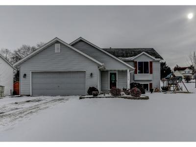 Lakeville Single Family Home For Sale: 17448 Homestead Trail