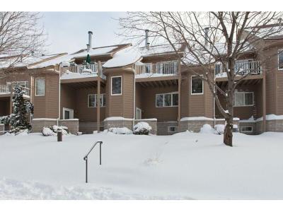 Minneapolis MN Condo/Townhouse For Sale: $355,000