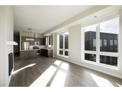 Minneapolis MN Rental For Rent: $2,945
