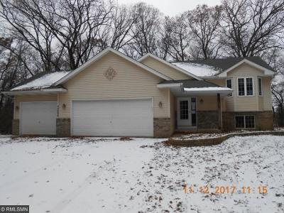 North Branch Single Family Home For Sale: 40898 Fahrion Road