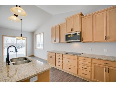 Faribault Condo/Townhouse For Sale: 1727 Crystal Lane