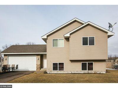 Braham Single Family Home For Sale: 1002 Palomino Street