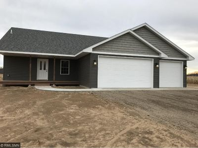 Chisago County Single Family Home For Sale: 37800 Reed Ave Avenue NW