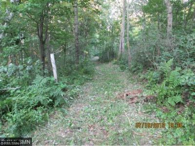 Sandstone Residential Lots & Land For Sale: Xxx Fox Rd. Dell Grove Twp
