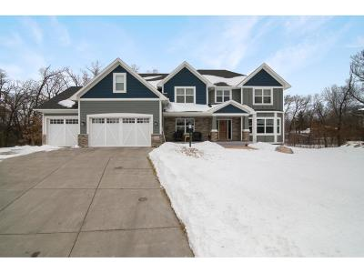 Lakeville Single Family Home For Sale: 10301 176th Street W