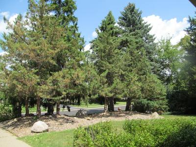Eden Prairie Residential Lots & Land For Sale: 9905 Bluff Road