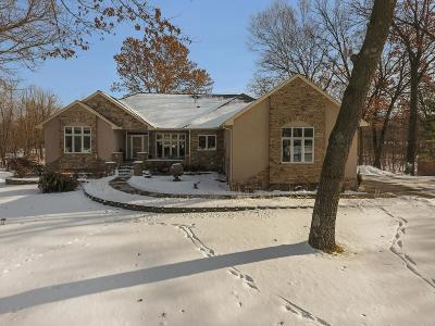 Elk River Single Family Home For Sale: 20539 Victoria Drive NW