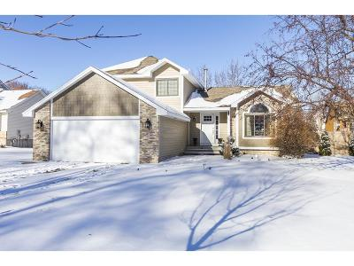 Coon Rapids Single Family Home For Sale: 65 119th Avenue NW