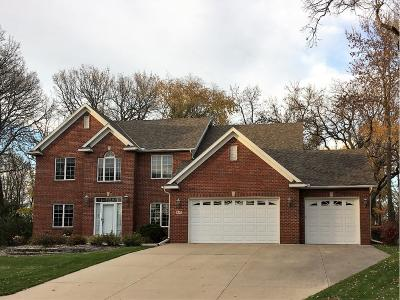 Sartell Single Family Home For Sale: 613 17th Street N